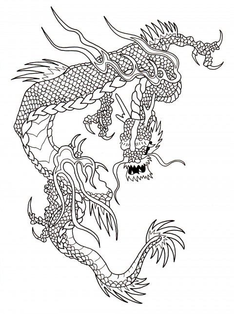 Dragon Scale Outline