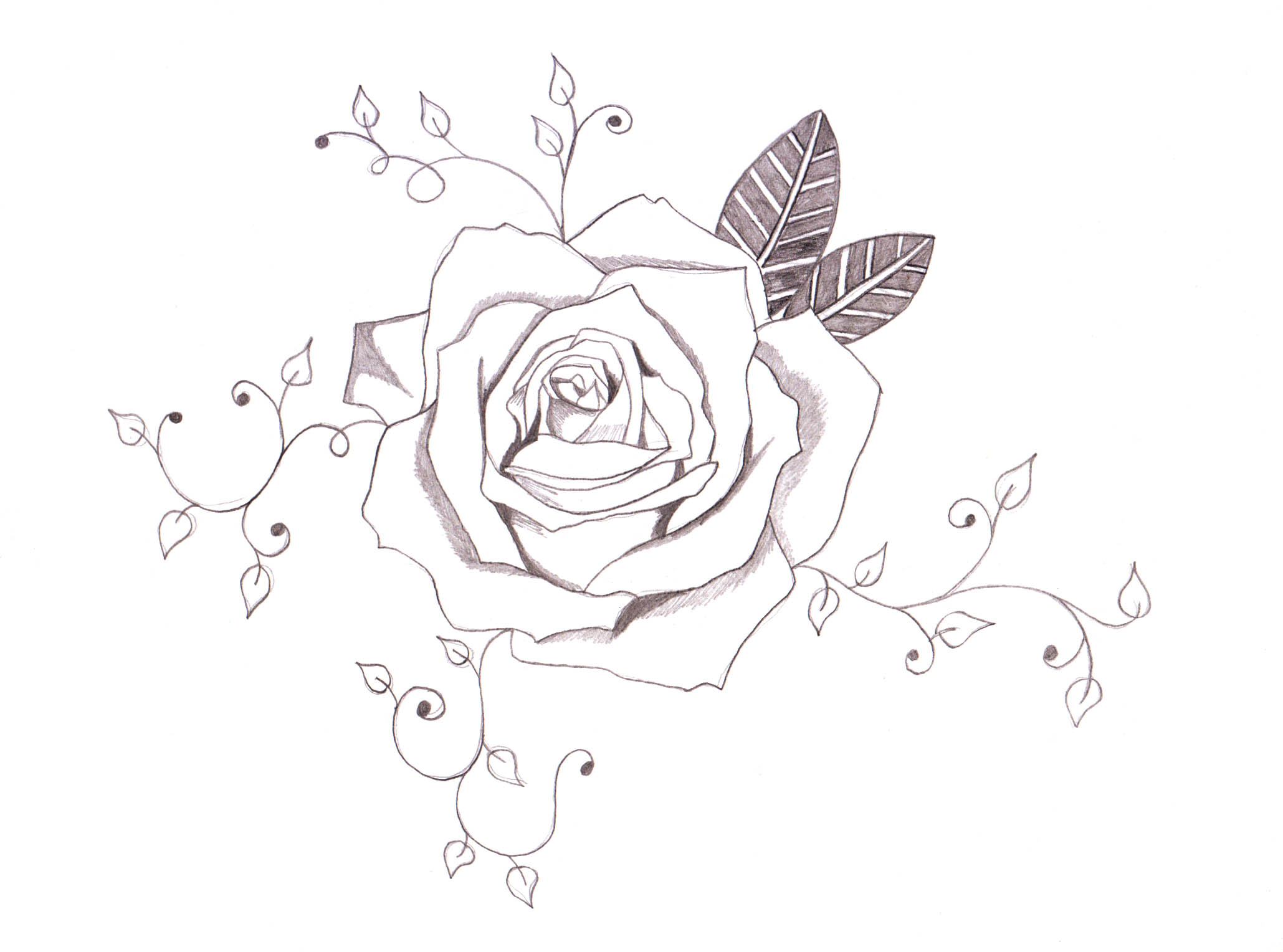 Vines With Roses Tattoo Designs