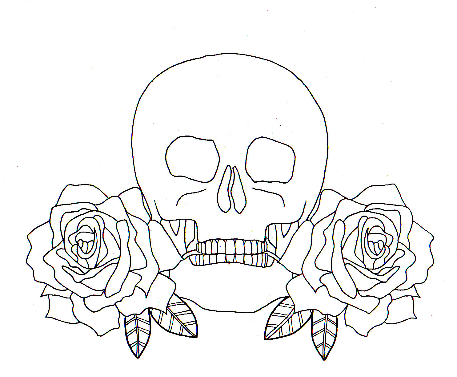 Line Drawing Skull : Skull and roses line drawing paper wings illustration